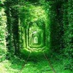 Tunnel of Love-Ukraine : टनल ऑफ़ लव-यूक्रेन