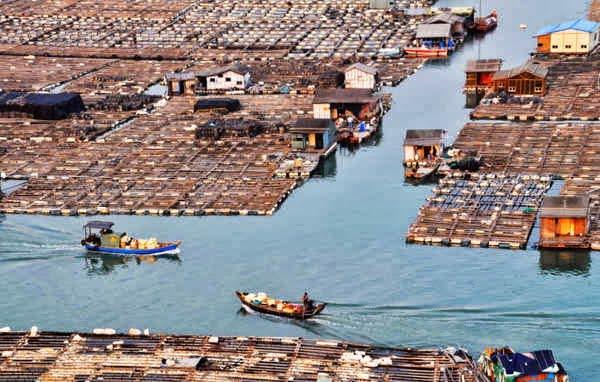 Tanka Comunity, People, China, Hindi, History, Story, Ithias, Information, Jankari. Kahani, Floating Boat, 23