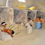 हरियाणा में है भारत की सबसे पुरानी वर्किंग वाटर फ्लौर मिल