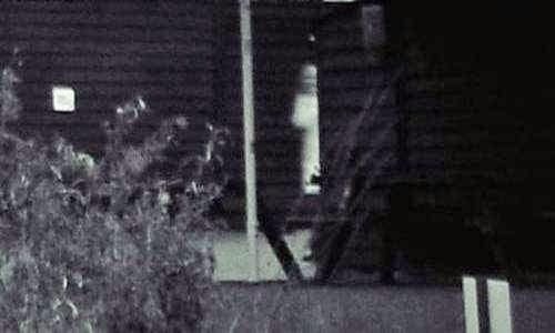 Farm ghost Story