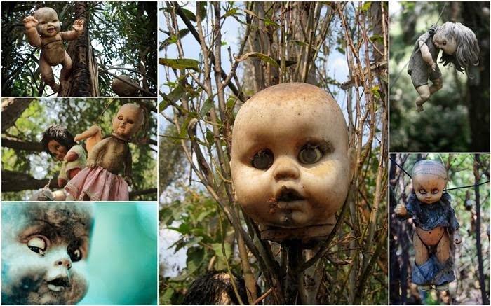 Doll Island Mexico, Hindi, Story, History, Kahani, Itihas, Information, Haunted, Creepy, Mysterious, Creepy,