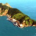 स्नेक आइलैंड – ब्राज़ील – यहाँ चलती है जहरीलें गोल्डन पिट वाइपर सांपो कि हुकूमत
