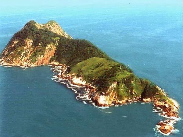Snake Island - Brazil, Hindi, History, Story, Information, Itihas, Janakari , Khanai, Dangerous, Deadly, Khatarnak,