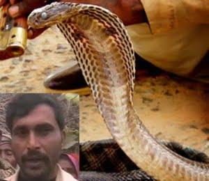 Real Hindi Snake Story , Kahani,