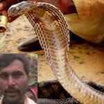 सत्य घटना – सांप ने काटा,  डाकटरों ने मृत घोषित किया, घरवालों ने गंगा में बहाया, 14 साल बाद जिन्दा लौट आया युवक
