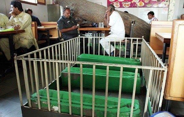 New Lucky Restaurant built on cemetery in Ahmadabad