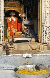 Karni Mata Temple Story