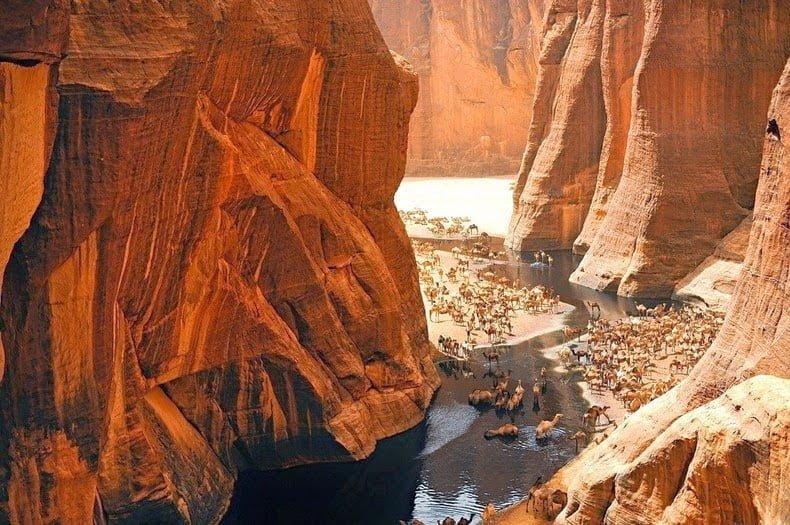 Guleta d'Archei, Sahara Desert, Hindi, Story, History, Kahani,