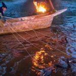 कोरमोरेंट फिशिंग या उकाई  – मछली पकड़ने का 1300 साल पुरानी अनोखा तरीका (Cormorant Fishing or Ukai – 1300 Year old Japani Art of Fishing)