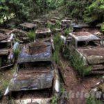 चैटिलोन – कारो का कब्रिस्तान –  इस जंगल में है 70 साल पुरानी 500  से अधिक कारे