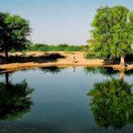 कहानी मेघा की – जिसने अपने दृढ़ संकल्प से अकेले ही थार के रेगिस्तान में बना दिया था तालाब