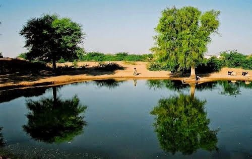 Hindi, Real, Motivational, Inspirational, Story, History, Bhap, Bap, Megha, Megrasar Pond, Jaisalmer, Bikaner, Rajasthan,