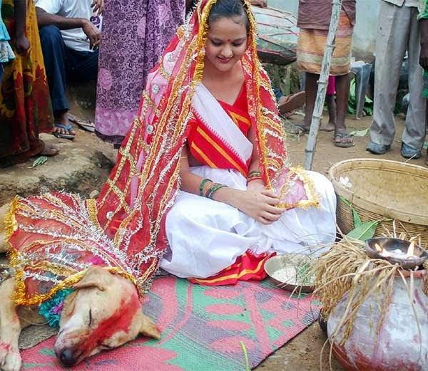 Girl - Dog Marriage Hindi Story
