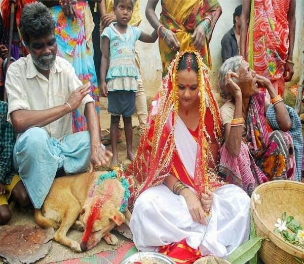 Andhvishwas Girl - Dog Marriage
