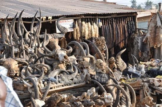 Akodessewa Fetish Woodoo Market in Hindi