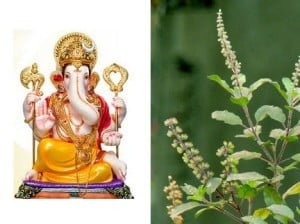 Ganesh Tulsi Story in Hindi