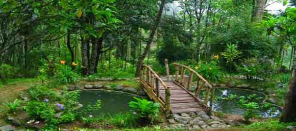 Jawaharlal Nehru Botanical Garden, Sikkim, Information & History in Hindi