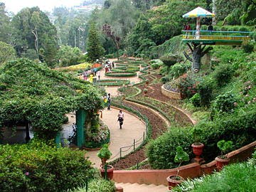 Botanical Garden, Ooty, Information & History in Hindi