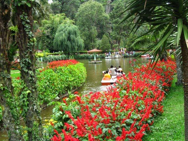 Sim's Park Coonoor, Information & History in Hindi