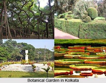 Indian Botanical Garden, Kolkata, Information & History in Hindi