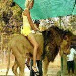 लुजान जू- विशव का सबसे खतरनाक  और विवादित जू, जहां आप कर सकते है शेर की सवारी
