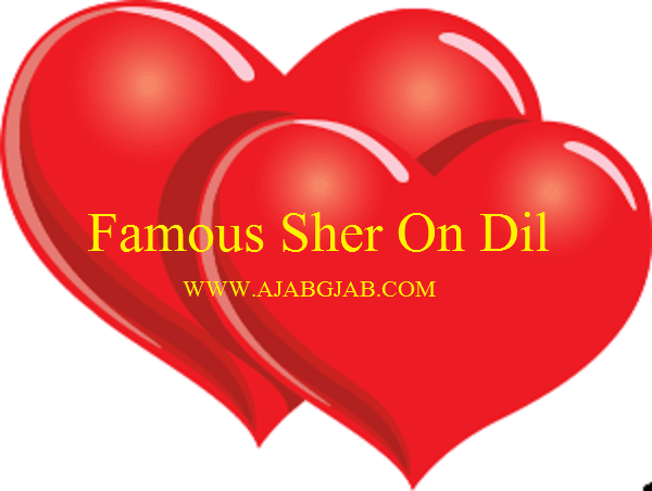 Famous Sher on Dil