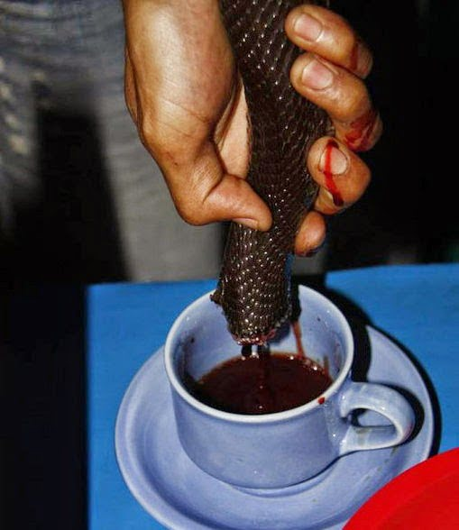 These people drink snake blood - Amazing information in Hindi