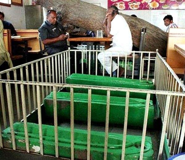 New Lucky Restaurant, Ahmedabad - dine amidst the dead