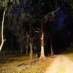 दिल्ली की 10 डरावनी जगह  ( Top10 Haunted Places in Delhi)