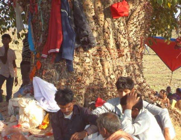 Ghost Fair of Bhagwati Devi Dham Information in Hindi