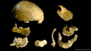 Our Ancestors Were Cannibals
