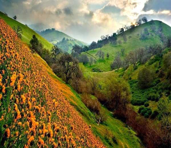Namik Ramganga Valley information in Hindi