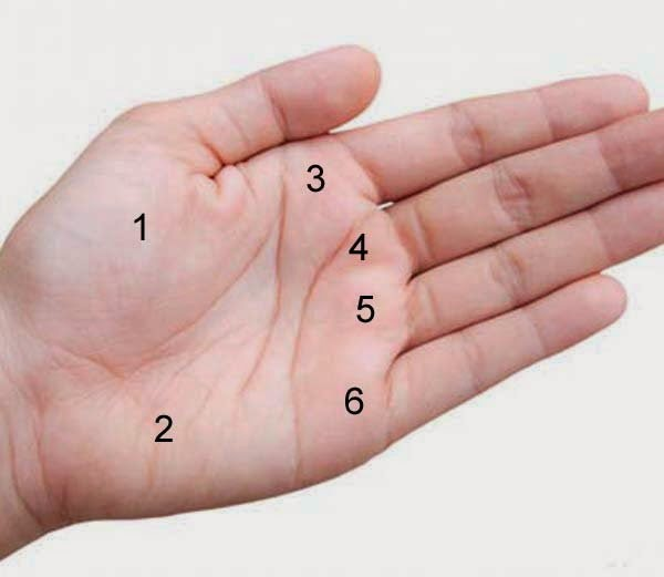 Palmistry mole on palm in Hindi
