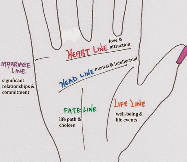 Palmistry Heart Line in Hindi : प्रेम और संतान के ...