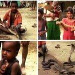 Indian Snake Village Hindi Story : एक गांव जहाँ बच्चें खेलते है ज़हरीले सांपो से, खिलोनो की तरह