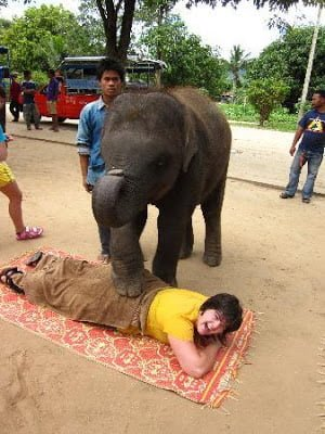 elephant-massage