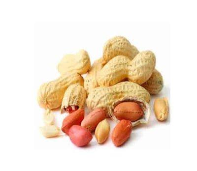 Health benefits of Ground nuts (mungfali) in Hindi