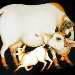 शकुन शास्त्र- जानिए गाय से जुड़े शकुन-अपशकुन