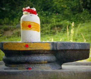 Shivling (16 types) abhishek benefits in Hindi