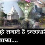 गंधर्वसेन मंदिर,गंधर्वपुरी- जहां चूहे लगाते हैं इच्छाधारी नाग की परिक्रमा