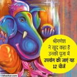 श्रीगणेशपुराण- श्रीगणेश ने खुद कहा है उनकी पूजा में उपयोग की जाएं यह 12 चीजें