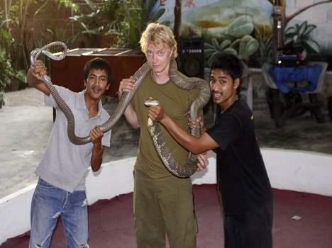 Facts About King Cobra in Hindi, Information, Jankari,