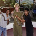 किंग कोबरा के बारे में 10 रोचक तथ्य  (10 Interesting Facts about King Cobra)