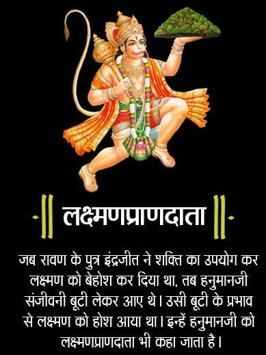 12 Name of Lord Hanuman, Hanuman, Lakshman Pran Data, Dash Grieve Darpha, Ramesht, Phalgun Sakha, Pingaksh, Amit Vikram, Udhikrman, Anjni Sunu, Vayu Putar, Mahabal, Sita Shok Vinashn,
