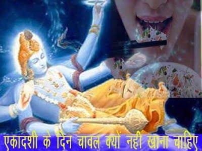 Hindi, Information, Jankari, Ekadashi ko chawal kyo nahi khana chahiye?, Why rice avoid on ekadashi,