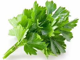 Coriander Leaf - Helpful to reduce weight