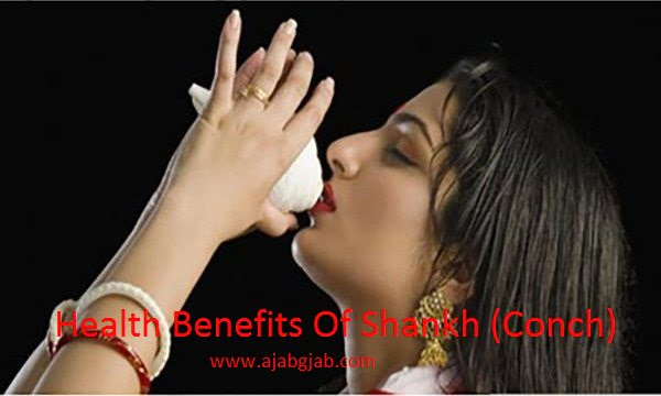 Health Benefits Of Shankh (Conch / Sea Shell) in Hindi, Shankh ke fayde