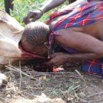 मसाई जनजाति पीती है जिन्दा जानवरों का खून, जानिए इनसे जुडी कुछ ऐसी ही रोचक बातें