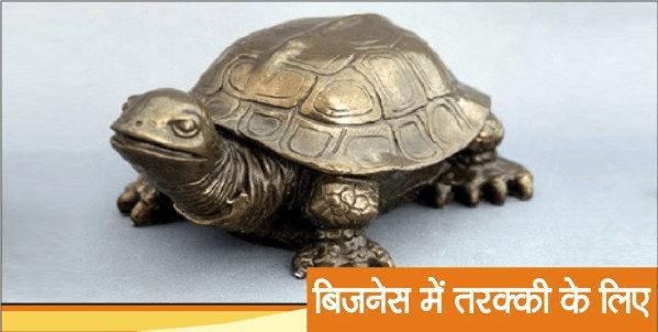 Feng Shui Tips, Tortoise, Hindi, Business, Vyapar,