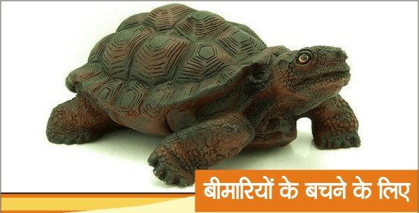 Feng Shui Tips, Tortoise, Hindi, For Health,